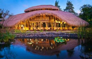 Luxury Wellness – Fivelements: Healthy, Spiritual Gem in Bali